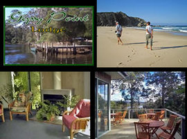 Gipsy Point Lodge - Accommodation Mermaid Beach