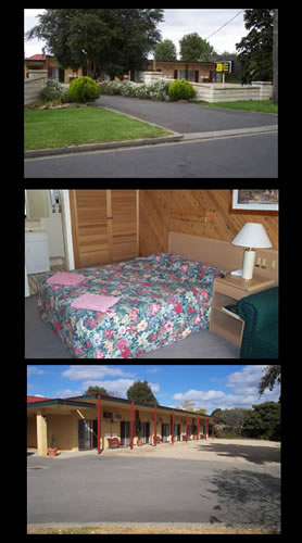 Ace Swan Motel - Accommodation Mermaid Beach