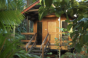 Cape Trib Beach House - Accommodation Mermaid Beach