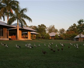Feathers Sanctuary - Accommodation Mermaid Beach
