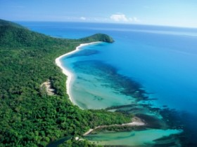 Cape Tribulation Camping - Accommodation Mermaid Beach