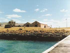 Mt Dutton Bay Woolshed Hostel - Accommodation Mermaid Beach