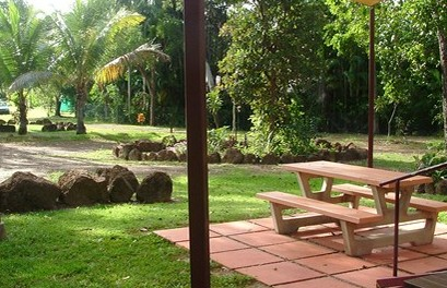 Virginia Heliconia Farm - Accommodation Mermaid Beach