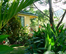 Daintree Valley Haven - Accommodation Mermaid Beach