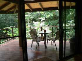 Cape Trib Exotic Fruit Farm Bed and Breakfast - Accommodation Mermaid Beach