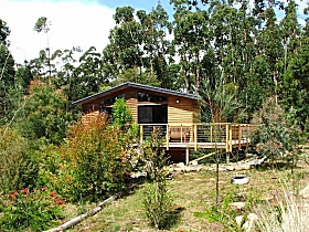 Southern Forest Accommodation - Accommodation Mermaid Beach