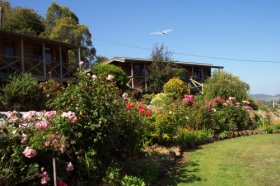 Mole Creek Holiday Village - Accommodation Mermaid Beach