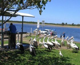 Mountain View Caravan and Mobile Home Village - Accommodation Mermaid Beach