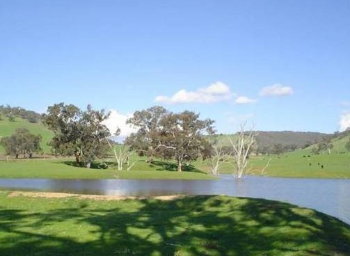 Hillview Farmstay - Accommodation Mermaid Beach