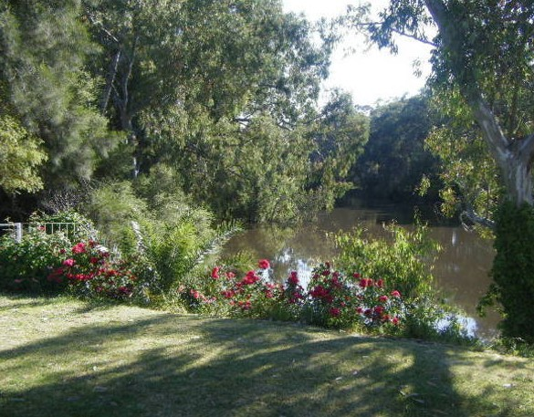 Bidgee Bankside Cottage - Accommodation Mermaid Beach