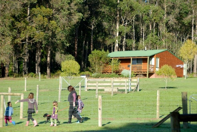 Diamond Forest Farm Stay - Accommodation Mermaid Beach