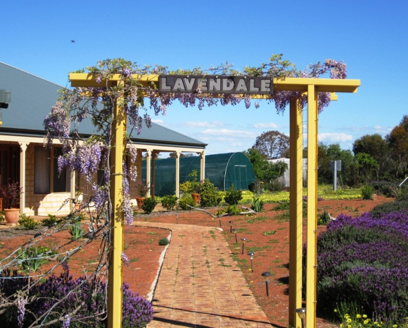Lavendale Farmstay and Cottages - Accommodation Mermaid Beach