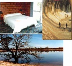 Wave Rock Resort - Accommodation Mermaid Beach