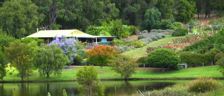 Lavender and Berry Farm - Accommodation Mermaid Beach