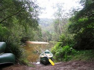Kurrajong Trails and Cottages - Accommodation Mermaid Beach