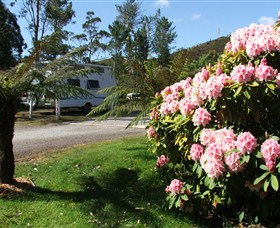 Zeehan Bush Camp  and Caravan Park - Accommodation Mermaid Beach