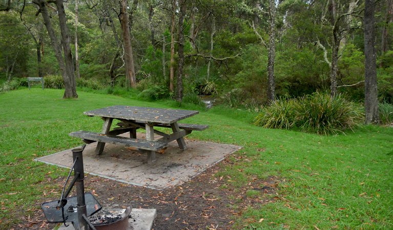 Chaelundi campground - Accommodation Mermaid Beach