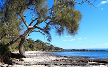 Currarong Beachside Holiday Park - Accommodation Mermaid Beach