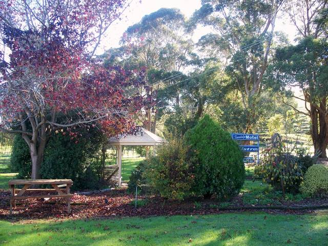 Toora Lodge Motel - Accommodation Mermaid Beach
