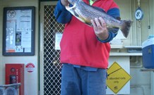 Rainbow Pines Tourist Caravan Park - Accommodation Mermaid Beach
