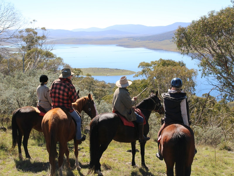 Reynella Homestead and Horseback Rides - Accommodation Mermaid Beach