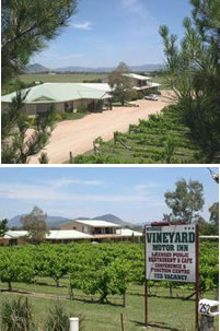 Mudgee Vineyard Motor Inn - Accommodation Mermaid Beach