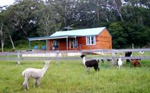 Moorallie Cottage Farm Stay - Accommodation Mermaid Beach