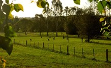 Stone Cottage Mittagong - Accommodation Mermaid Beach