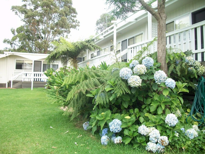 Top of the Lake Holiday Units - Accommodation Mermaid Beach