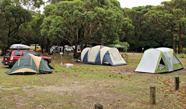 Pretty Beach Campground Murramarang National Park - Accommodation Mermaid Beach