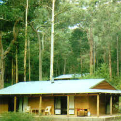 Warren River Cottages - Accommodation Mermaid Beach