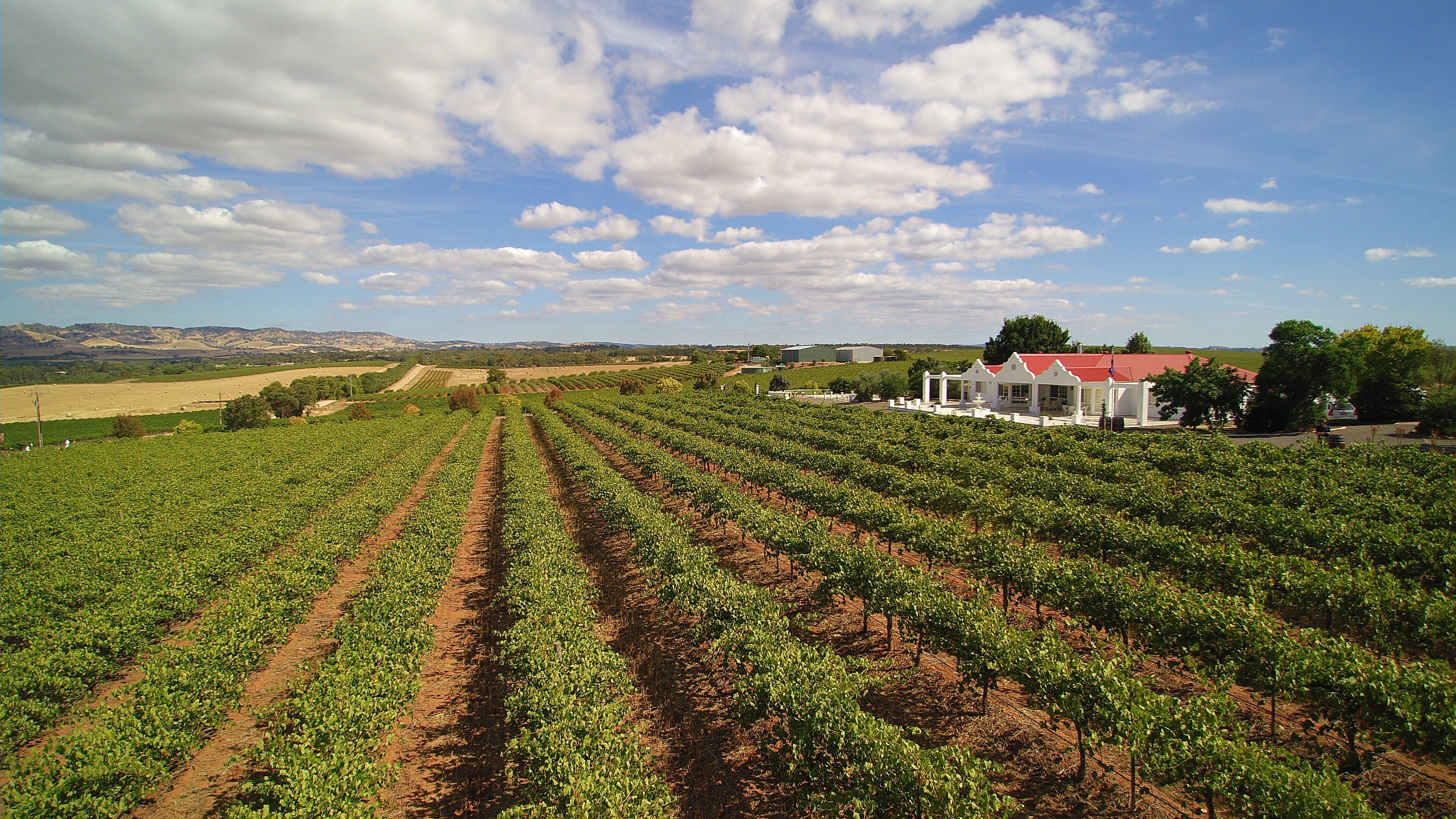 1837 Barossa Luxury Vineyard Cottages - Accommodation Mermaid Beach