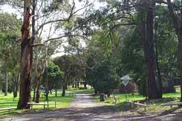Moe Gardens Caravan Park - Accommodation Mermaid Beach