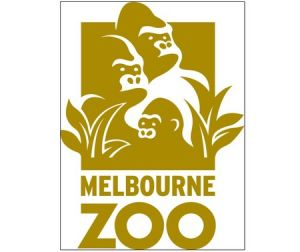 Melbourne Zoo - Accommodation Mermaid Beach
