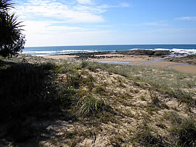 Deepwater National Park - Accommodation Mermaid Beach