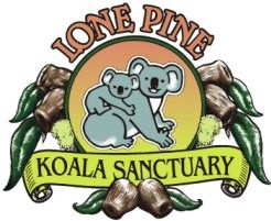 Lone Pine Koala Sanctuary - Accommodation Mermaid Beach