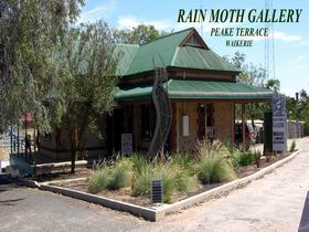 Rain Moth Gallery - Accommodation Mermaid Beach