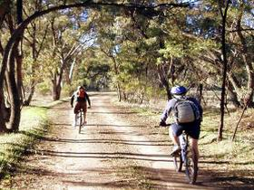 Bike About Mountain Bike Tours And Hire - Accommodation Mermaid Beach