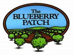 The Blueberry Patch - Accommodation Mermaid Beach
