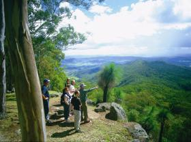 Gold Coast Hinterland Great Walk - Accommodation Mermaid Beach