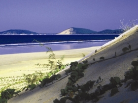 Cooloola, Great Sandy National Park