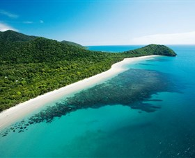 Cape Tribulation Daintree National Park - Accommodation Mermaid Beach