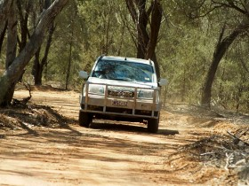 Ward River 4x4 Stock Route Trail - Accommodation Mermaid Beach