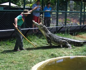 Snakes Downunder Reptile Park and Zoo - Accommodation Mermaid Beach