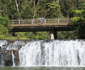 Malanda Falls Conservation Park - Accommodation Mermaid Beach