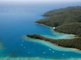 Butterfly Bay - Hook Island - Accommodation Mermaid Beach
