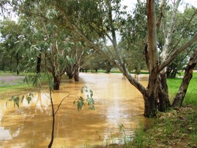 Saddliers Waterhole and Hamburg Creek - Accommodation Mermaid Beach
