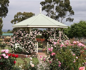 Morwell Centenary Rose Garden - Accommodation Mermaid Beach