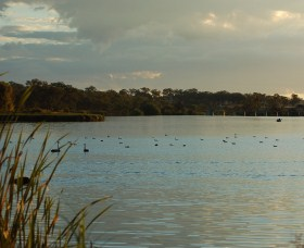 Lake Inverell Reserve - Accommodation Mermaid Beach