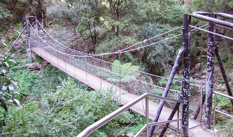 Jenolan River walking track - Accommodation Mermaid Beach